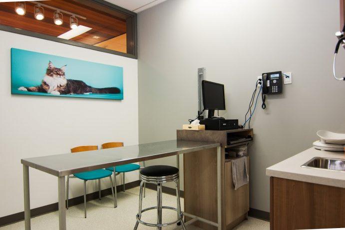 4- salle de consultation