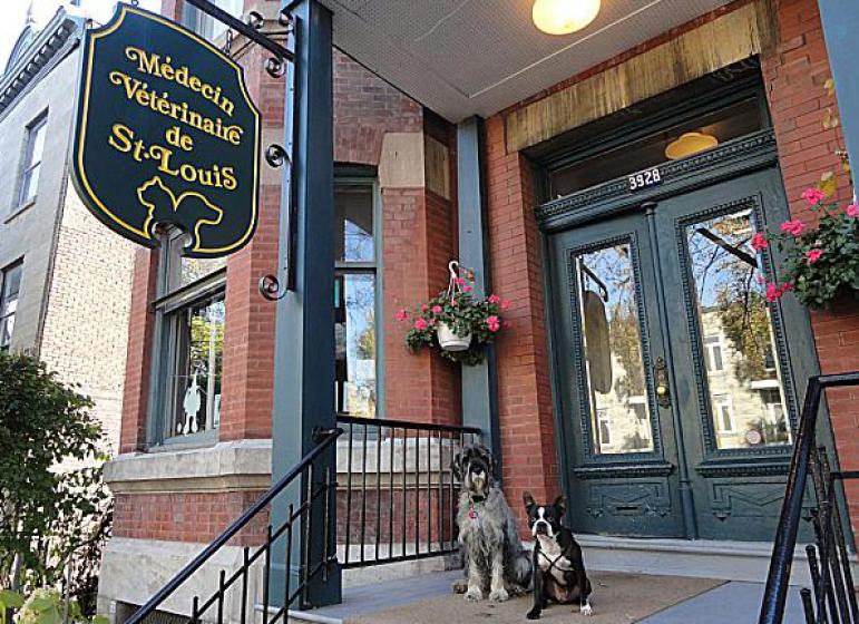 Clinique Vétérinaire Lac St-Louis Inc.