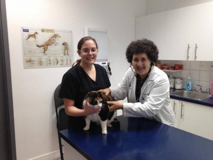 Clinique Vétérinaire de Beaconsfield Inc.